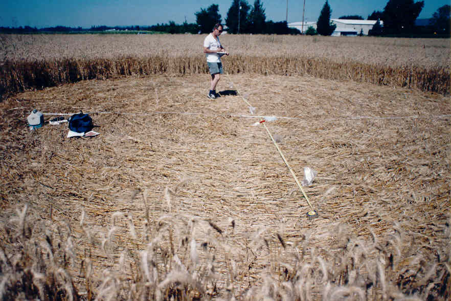 Crop Circles | Scientific Study to Categorize and Evaluate powered by Inception Radio Network