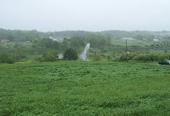 5-30-06-rockland-me-grassesblog