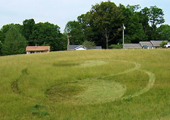 5-27-07-washevillenc_grass_cropped