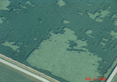 8-17-08_mo-aerial_closearea