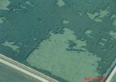 8-17-08_mo-aerial_closearea